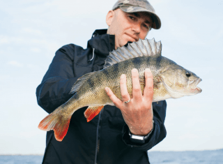 Catching a Small-Mouth Bass