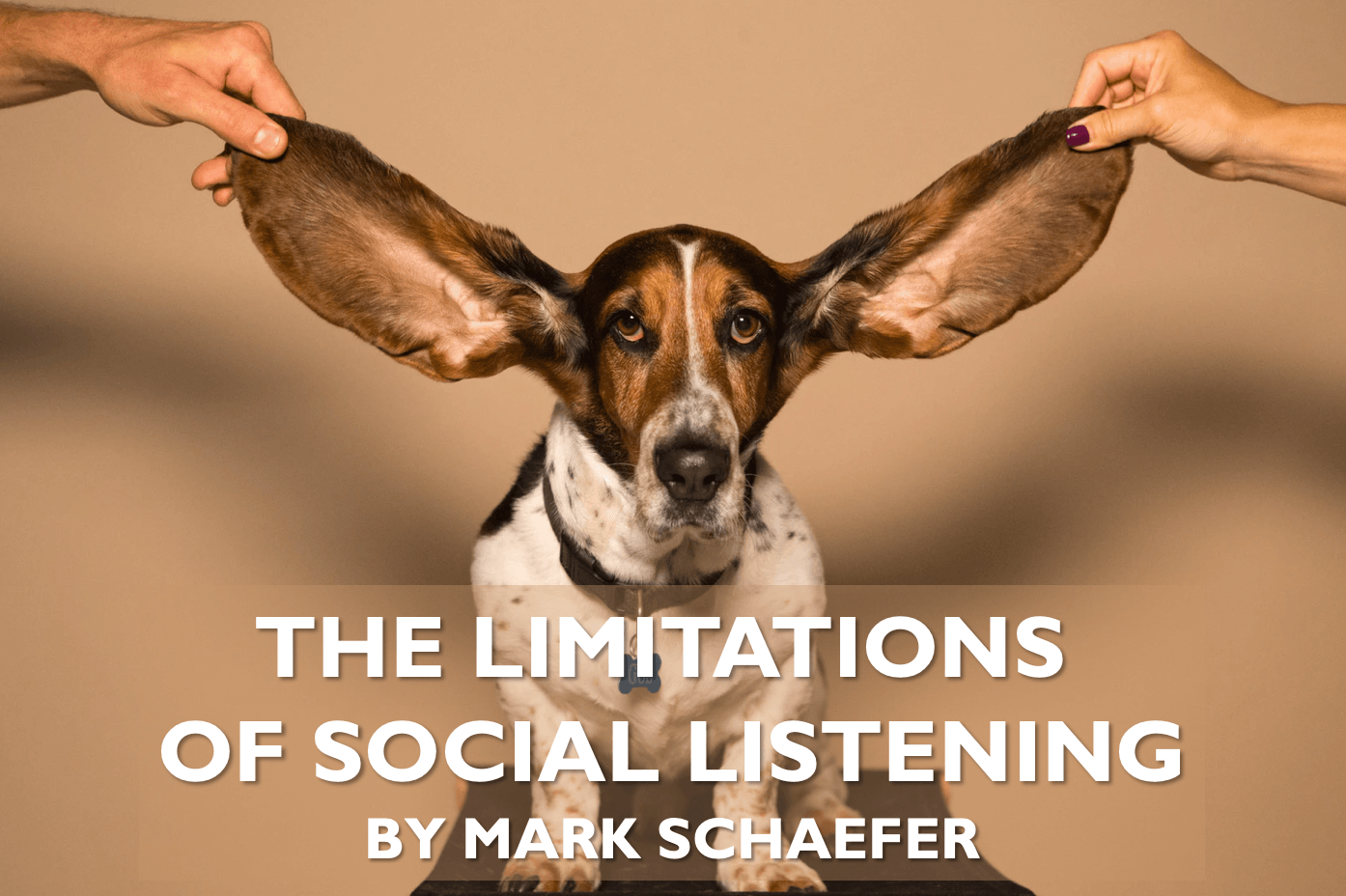 "A social media myth: Do we really need to ""listen to our customers?"""