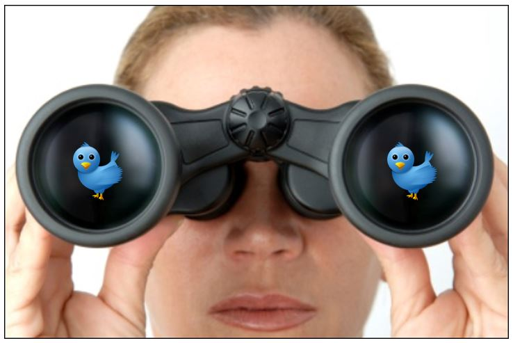 The essential guide to building your business through Twitter search | Schaefer Marketing Solutions: We Help Businesses {grow}