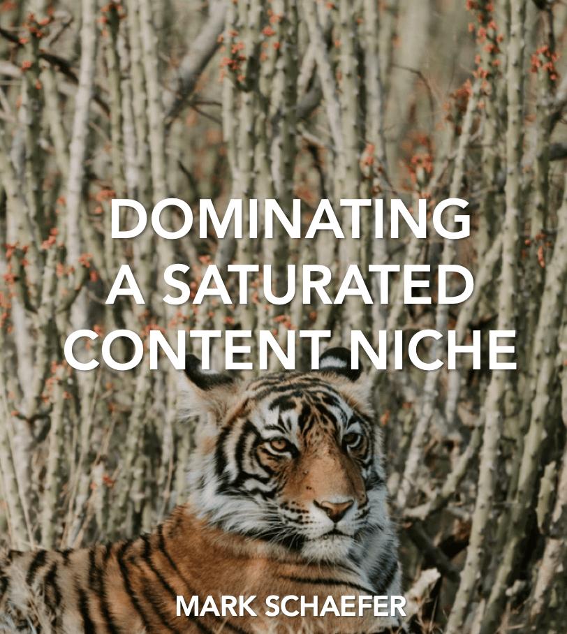 content saturation