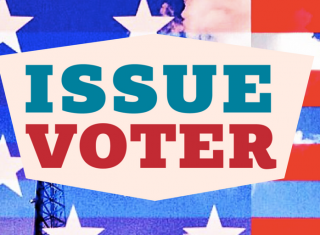 issue voter's logo on top of an American flag background
