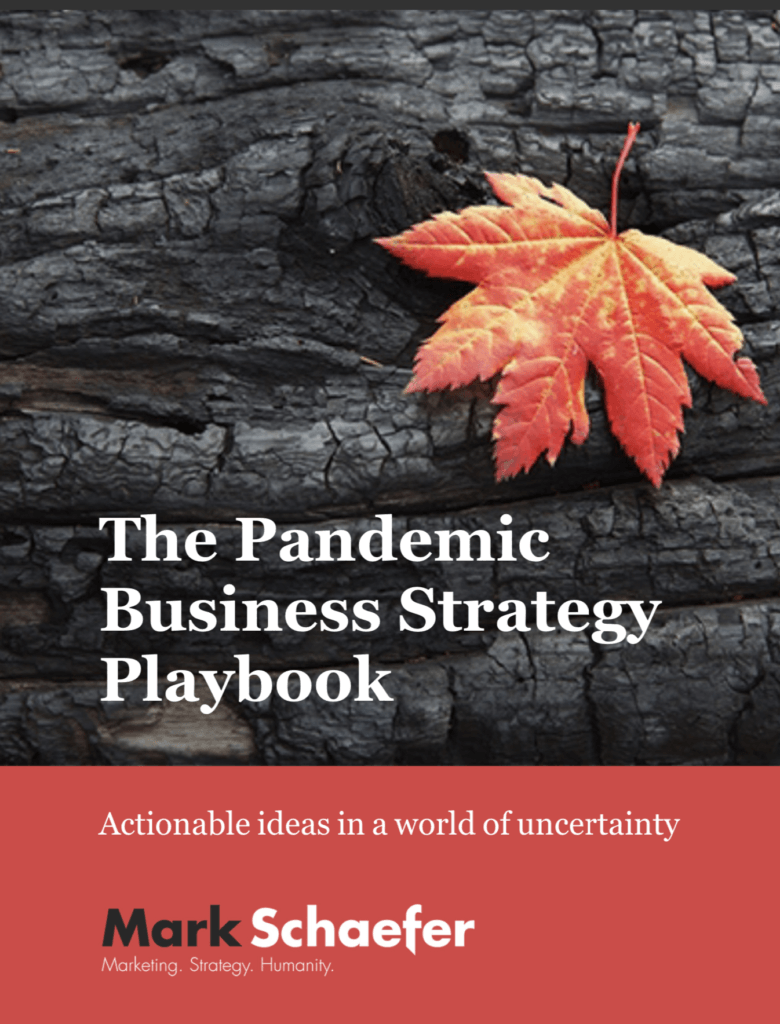 Pandemic Business Strategy