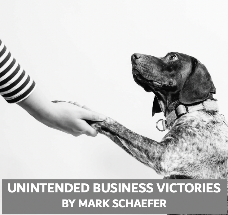 business victories