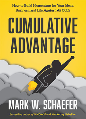 Cumulative Advantage - How to Build Momentum for Your Ideas, Business, and Life Against All Odds.